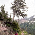 Montana hiking