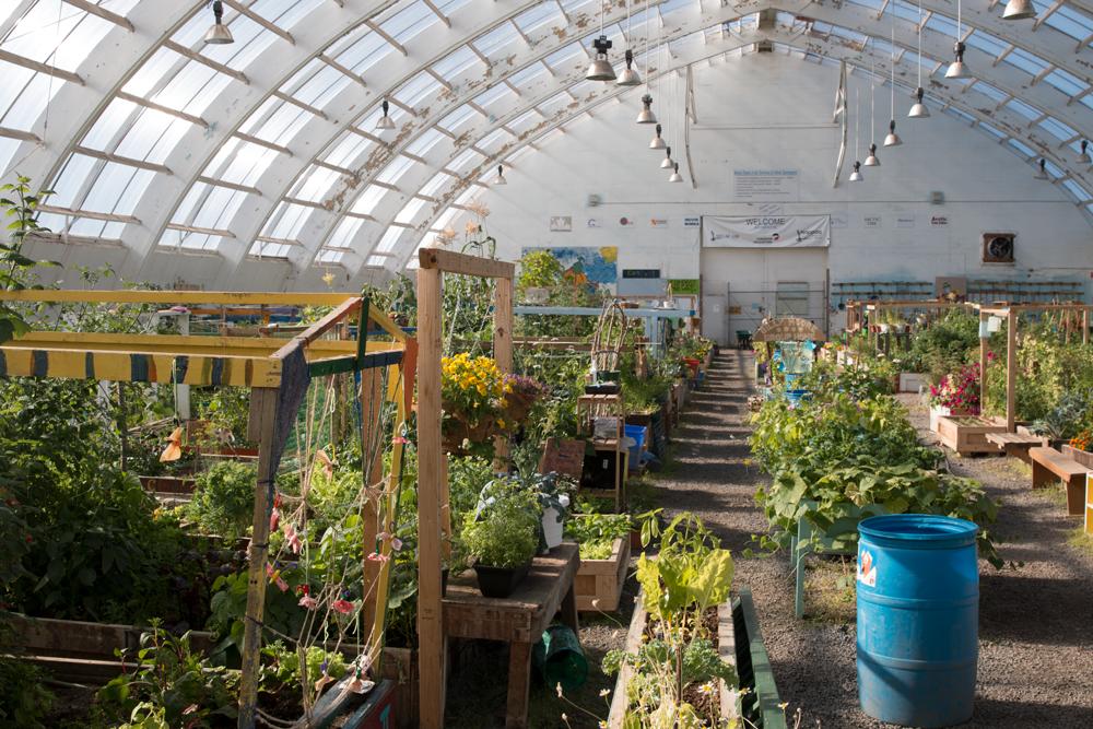 Inuvik greenhouse