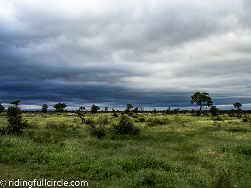 Rainy season Kruger National Park